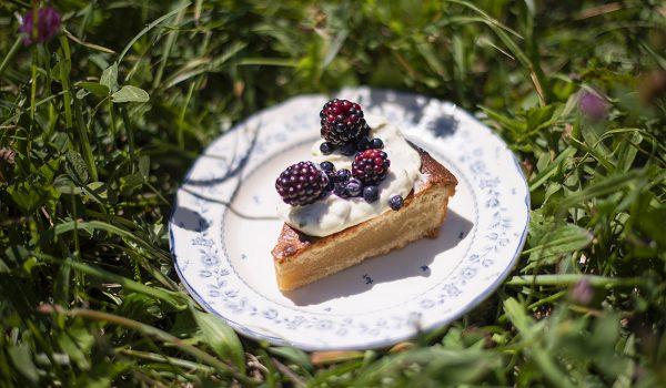 Culinary & fooding